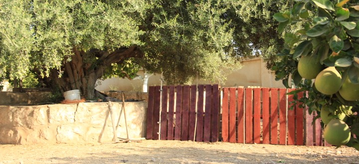 diy-pallets-barrier
