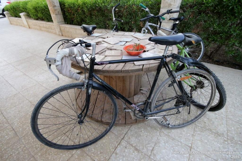 auberginn-jericho-cycling